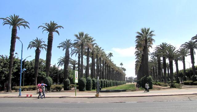 Maroc Casablanca parc de la ligue arabe